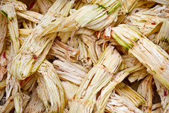 Sugarcanebagasse Arkivfoton