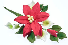 Sugarcraft Pointsettia Stock Photography