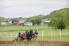 SUGARCREEK, OH - 21 MEI, 2015: Een niet geïdentificeerde Amish-mens Royalty-vrije Stock Foto's