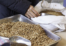 Sugared almonds bulk royalty free stock image