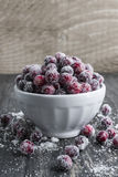 Sugared cranberries Stock Photos