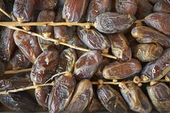 Sugared dates on a tray stock images