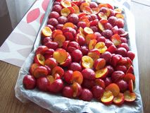 Sugared plums royalty free stock photos