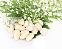 Sugared white Stock Image
