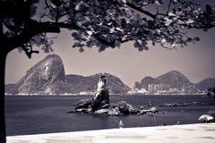 sugarloaf的视图在里约热内卢 免版税图库摄影