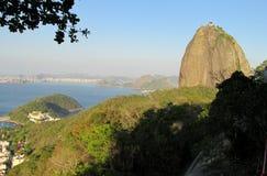 sugarloaf berg in Rio de Janeiro Stock Afbeeldingen