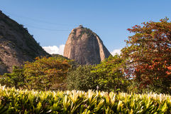 Sugarloaf Mountain and Autumn Colors Stock Photography
