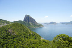 Sugarloaf Mountain Greenery and Guanabara Bay Rio Stock Photos