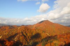 Sugawa and Autumn leaf color Royalty Free Stock Image