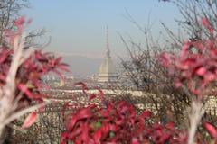 Suggestiva Torino - vista pintoresca de Vista de Turín - - Piemonte - Italia Fotos de archivo libres de regalías