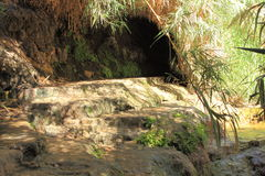 Suggestive Path in the Nature of Ein Gedi Stock Images