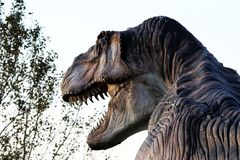 Suggestive reconstruction of predator dinosaurus  - Ostellato, Ferrara, Italy. Suggestive reconstruction of predator dinosaurus  - Photo taken in Ostellato Stock Images
