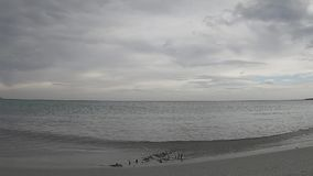Suggestive time lapse of the sea almost flat with the cloudy gray sky in flat color stock video footage