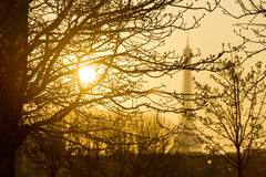 Suggestive View of the Eiffel Tower through Branches at Sunset Stock Image