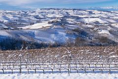 Snowy hilly landscape on the vineyards of the Langhe in the Unesco territory of Italy royalty free stock photography