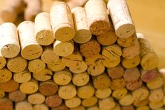 Sugheri del vino Fotografia Stock