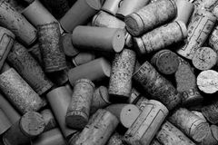 Sugheri del vino in in bianco e nero Fotografia Stock Libera da Diritti