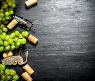 Sugheri del vino con il ramo dell'uva e della cavaturaccioli Immagini Stock