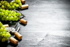 Sugheri del vino con il ramo dell'uva e della cavaturaccioli Immagine Stock Libera da Diritti