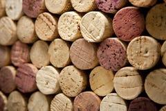 Sugheri del vino dall'angolo e dal fuoco selettivo Immagine Stock Libera da Diritti