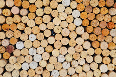 Sugheri della bottiglia di vino Fotografia Stock