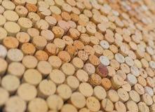 Sugheri della bottiglia di vino Immagine Stock