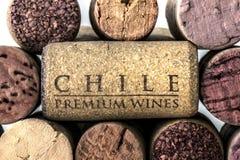 Sugheri della bottiglia di vino del Cile 08 Fotografia Stock Libera da Diritti