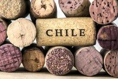 Sugheri della bottiglia di vino del Cile 05 Fotografia Stock