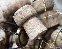 Sugheri di Champagne Fotografia Stock