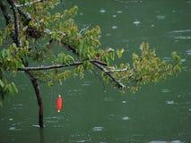Sughero di pesca Fotografia Stock Libera da Diritti