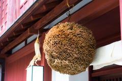 The Sugidama Sugi Ball