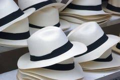 sugrör för svarta hattar för band fotografering för bildbyråer