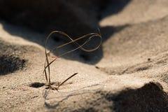 Sugrör som formas som evighet- eller oändlighetssymbol på kornmakro för sandig strand royaltyfri bild