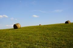 Sugrörbal på fält Arkivbild