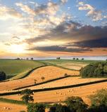 Sugrörbaler på fältet i England Royaltyfri Bild
