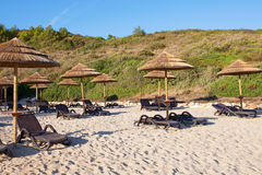 Sugrörparaplyer i stranden arkivbilder
