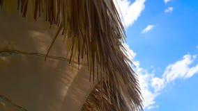 Sugrörstrandparaply under blå himmel, ultrarapidrörelse på vind, reservation för sommarferie lager videofilmer