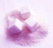 Suiker Stock Afbeeldingen