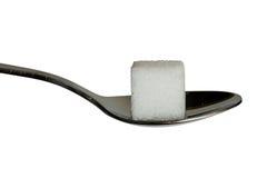 Suiker cobe op een theelepeltje Royalty-vrije Stock Afbeeldingen