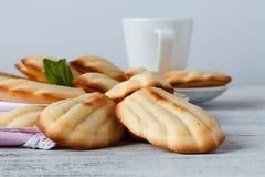 Suiker gepoederde madeleines met koffie en citroen Selectieve nadruk Royalty-vrije Stock Afbeelding