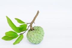 Suikerappelen of Annona-squamosa Linn op witte achtergrond Royalty-vrije Stock Afbeelding