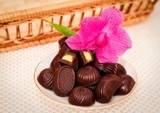 Suikergoed en orchidee Royalty-vrije Stock Fotografie