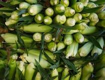 Suikermaïs op vertoning bij de markt van de landbouwer Royalty-vrije Stock Foto's