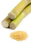Suikerriet en bruine suiker Royalty-vrije Stock Foto's