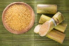 Suikerriet - Saccharum officinarum Stock Foto