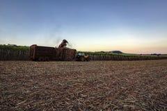 suikerrietgebied het mechanische oogsten met een tractor dragende oogst royalty-vrije stock afbeeldingen
