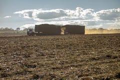 suikerrietgebied met een vrachtwagen dragende oogst stock fotografie