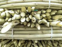 Suikerrietverkoop op straatmarkt Stock Afbeeldingen