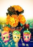 Suikerschedels op dag van de doden (Dia de Muertos) Royalty-vrije Stock Foto