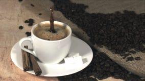 Suikerstuk het dalen in koffie stock video